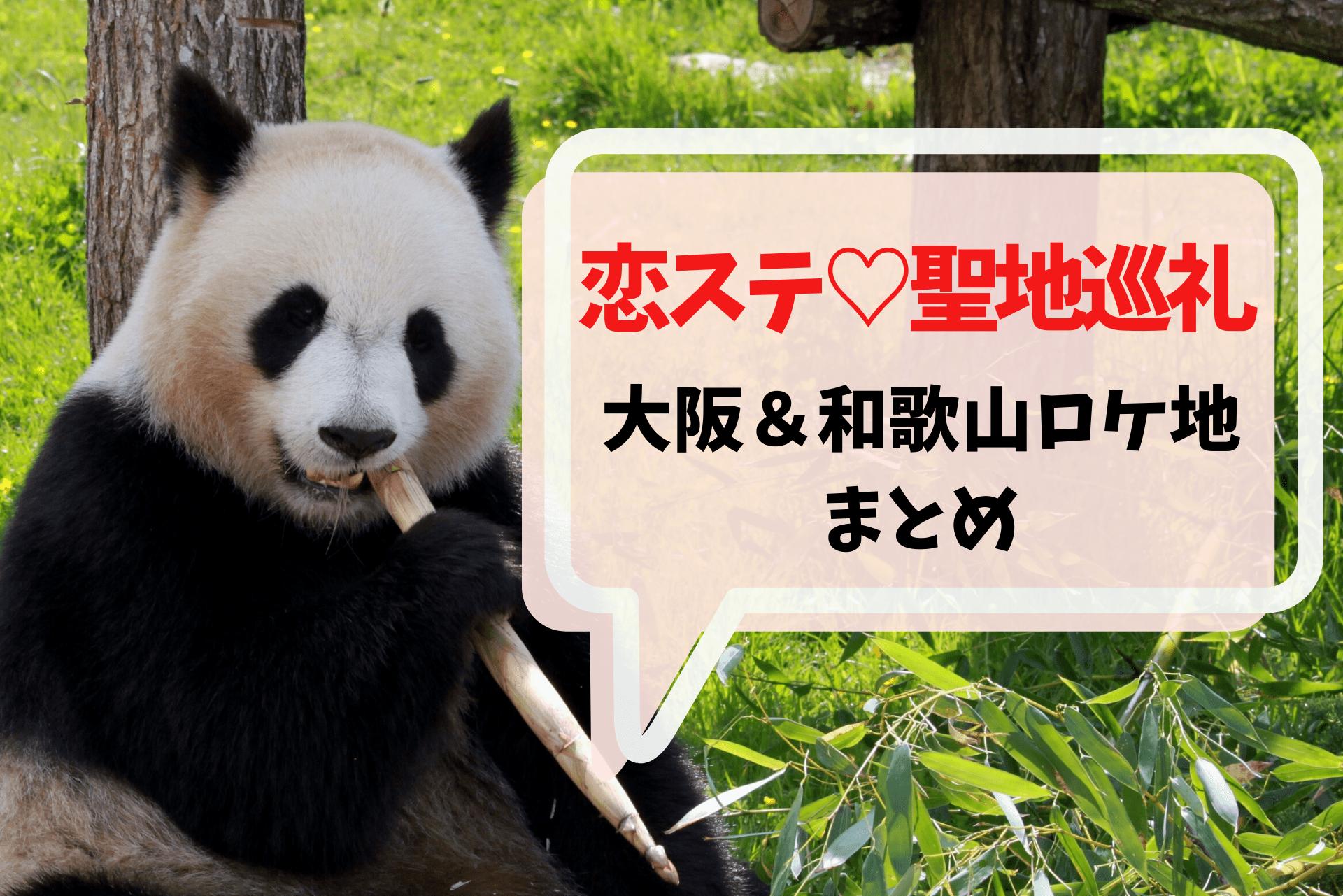 大阪&和歌山恋ステロケ地